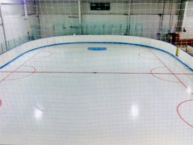 The Bog Ice Skating Rink